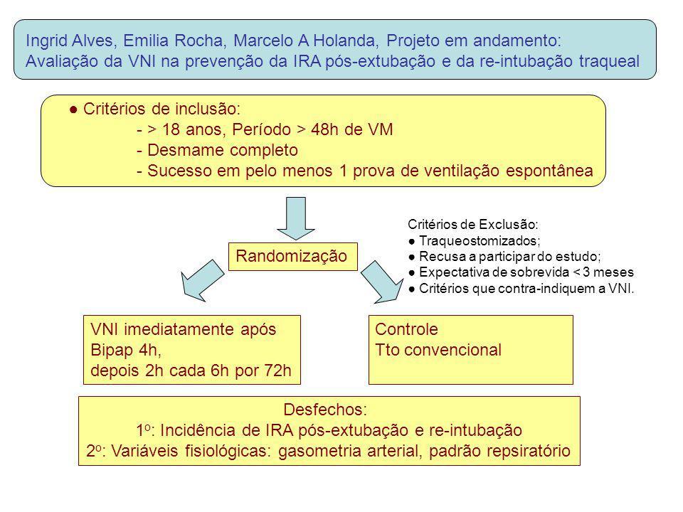 Ingrid Alves, Emilia Rocha, Marcelo A Holanda, Projeto em andamento: