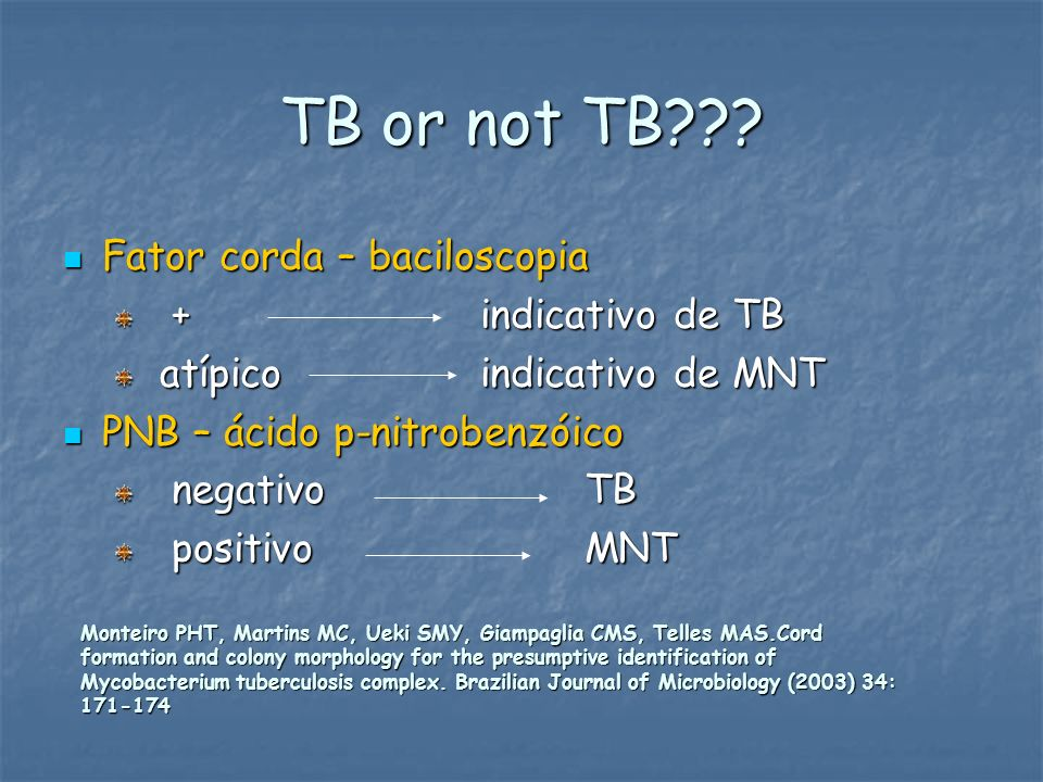 TB or not TB Fator corda – baciloscopia + indicativo de TB