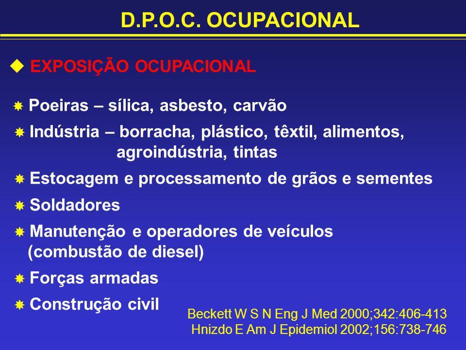 D.P.O.C. OCUPACIONAL  EXPOSIÇÃO OCUPACIONAL