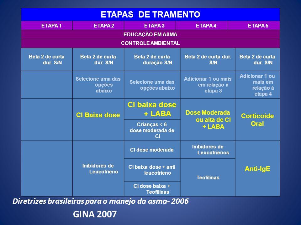 GINA 2007 ETAPAS DE TRAMENTO
