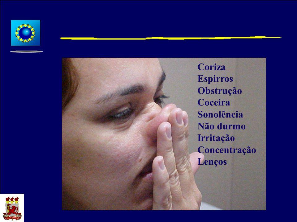 Coriza Espirros Obstrução Coceira Sonolência Não durmo Irritação Concentração Lenços