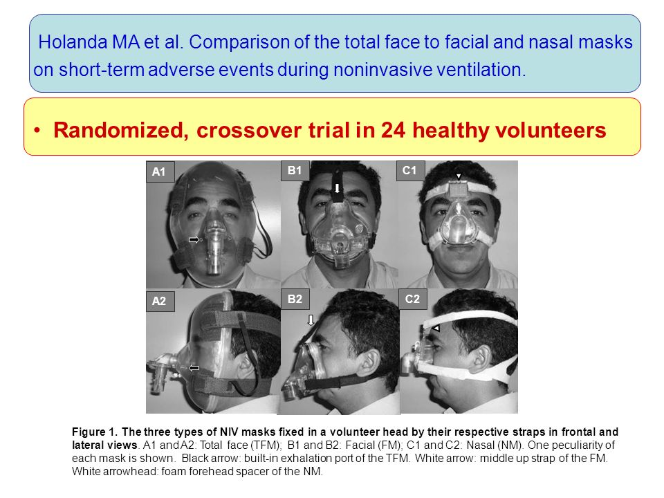 Randomized, crossover trial in 24 healthy volunteers