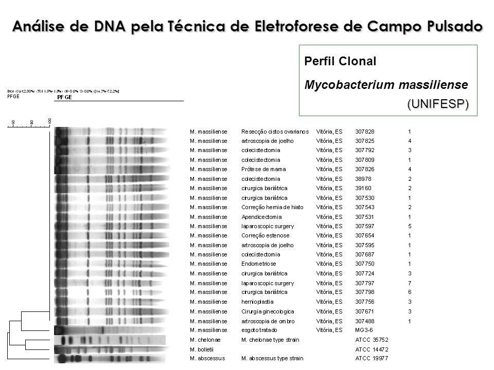 Análise de DNA pela Técnica de Eletroforese de Campo Pulsado