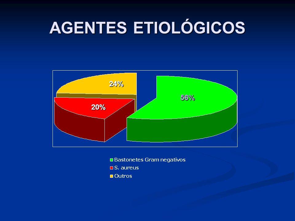 AGENTES ETIOLÓGICOS 24% 56% 20%