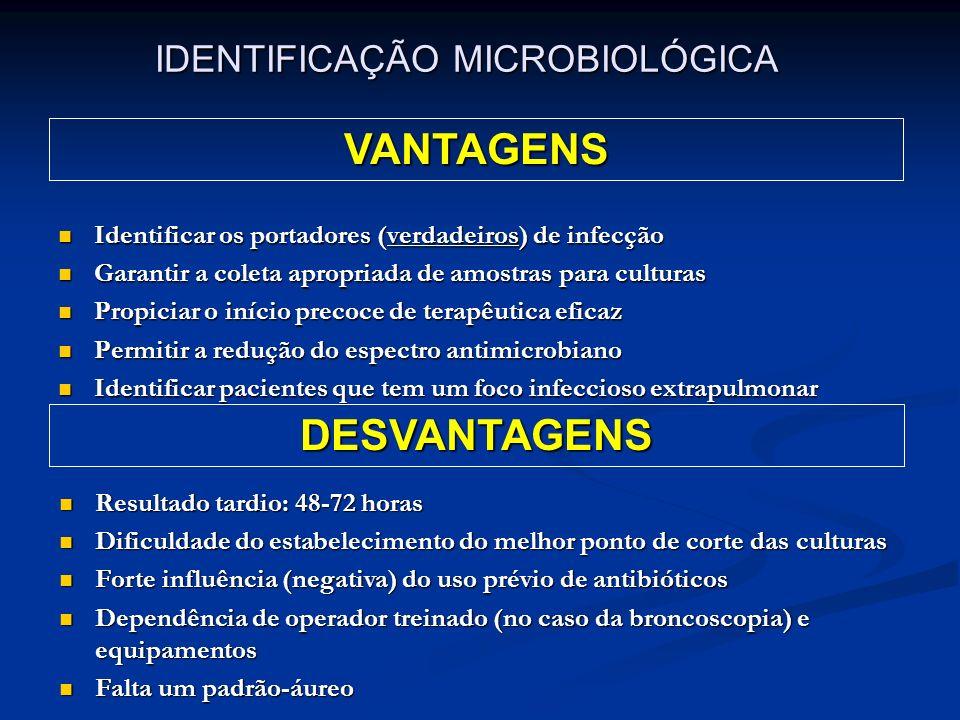 IDENTIFICAÇÃO MICROBIOLÓGICA