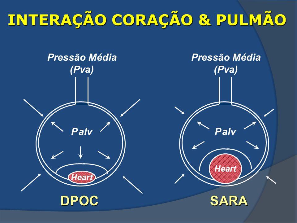 INTERAÇÃO CORAÇÃO & PULMÃO