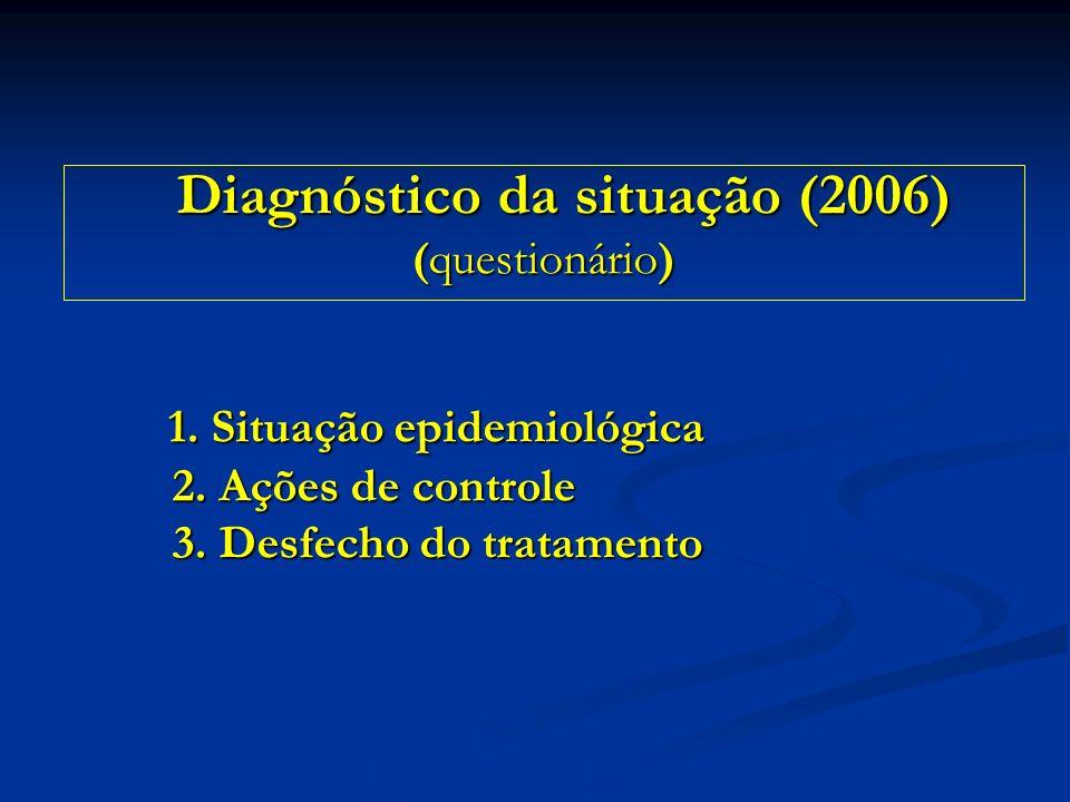 Diagnóstico da situação (2006)
