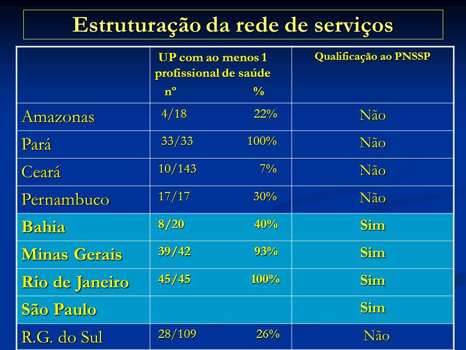 Estruturação da rede de serviços