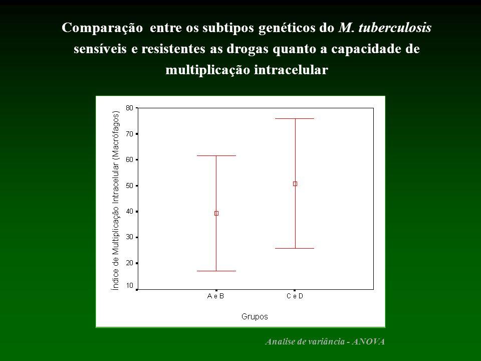 Comparação entre os subtipos genéticos do M