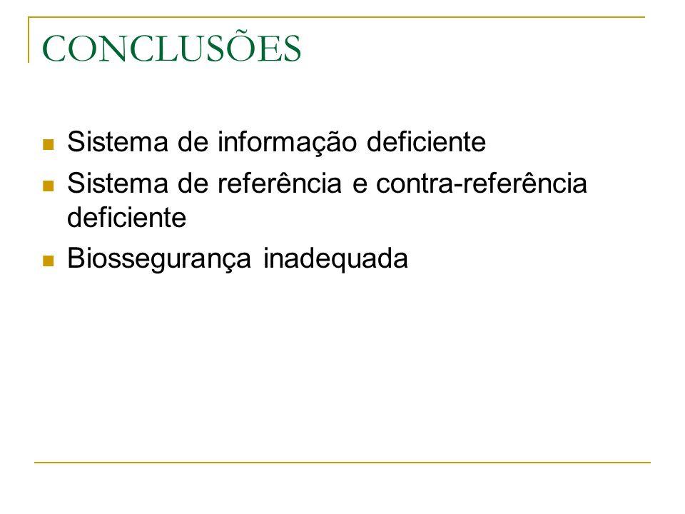 CONCLUSÕES Sistema de informação deficiente