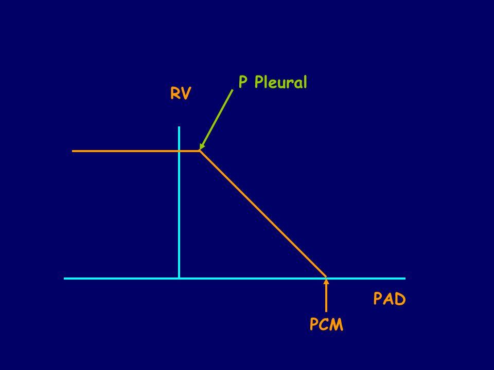 P Pleural RV PAD PCM