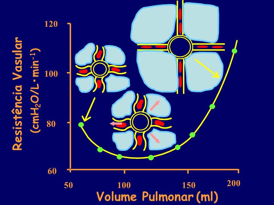 Resistência Vasular Volume Pulmonar (ml) (cmH2O/L•min-1) 100 80 60 120