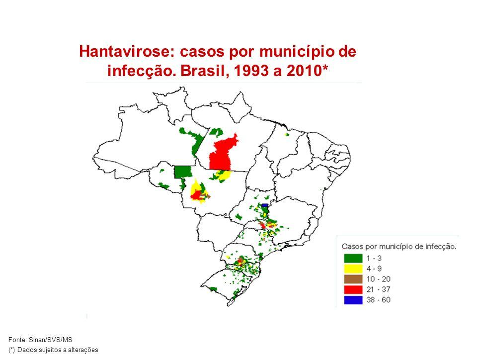 Hantavirose: casos por município de infecção. Brasil, 1993 a 2010*