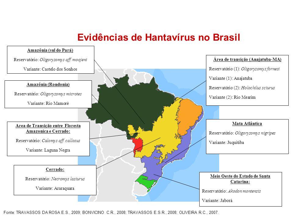 Evidências de Hantavírus no Brasil