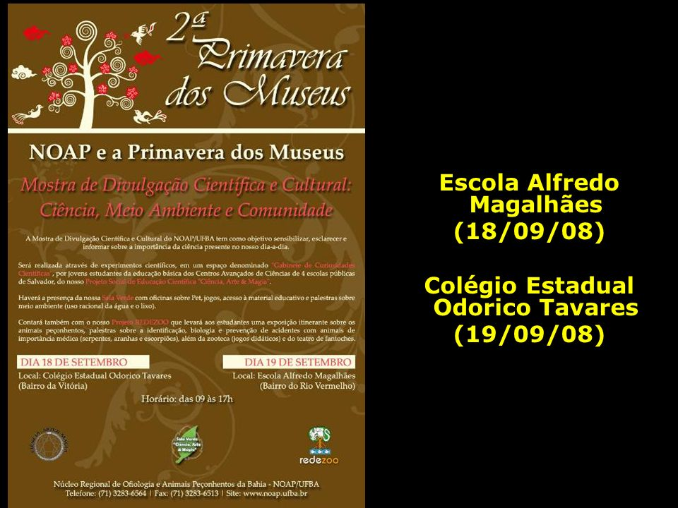 Escola Alfredo Magalhães Colégio Estadual Odorico Tavares