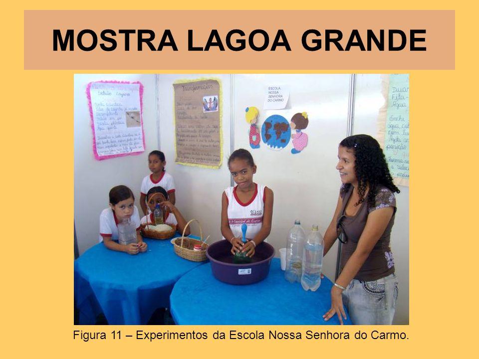 MOSTRA LAGOA GRANDE Figura 11 – Experimentos da Escola Nossa Senhora do Carmo.