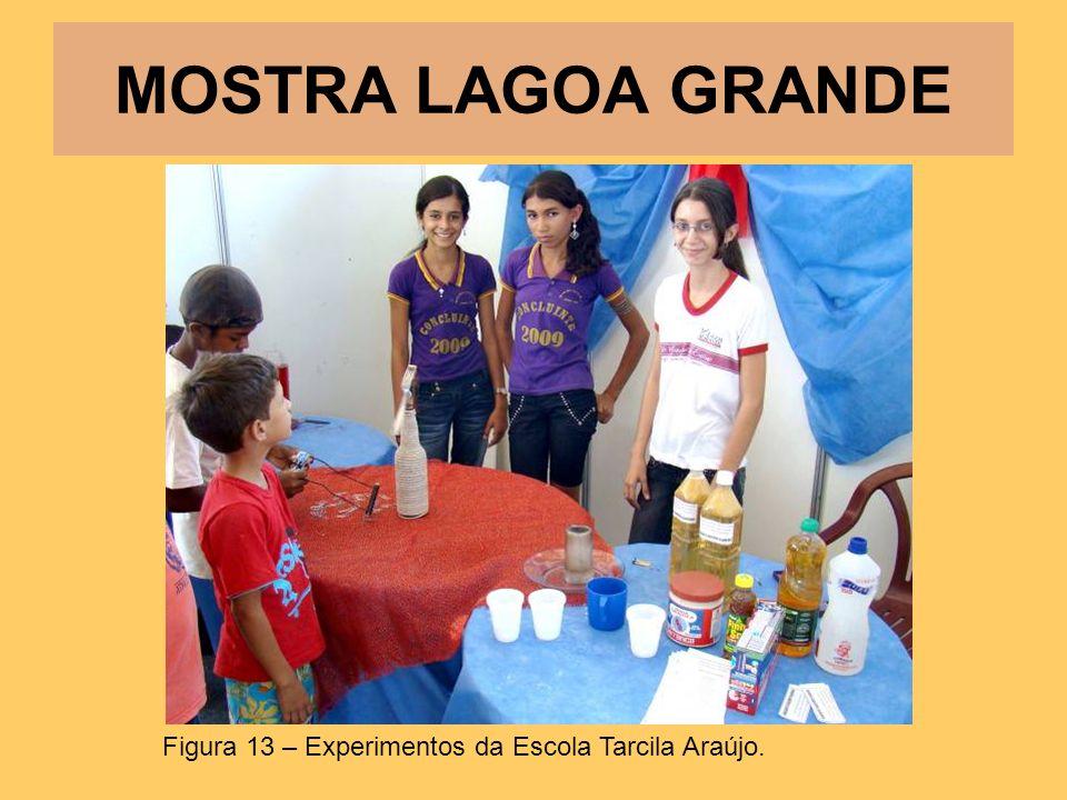 MOSTRA LAGOA GRANDE Figura 13 – Experimentos da Escola Tarcila Araújo.