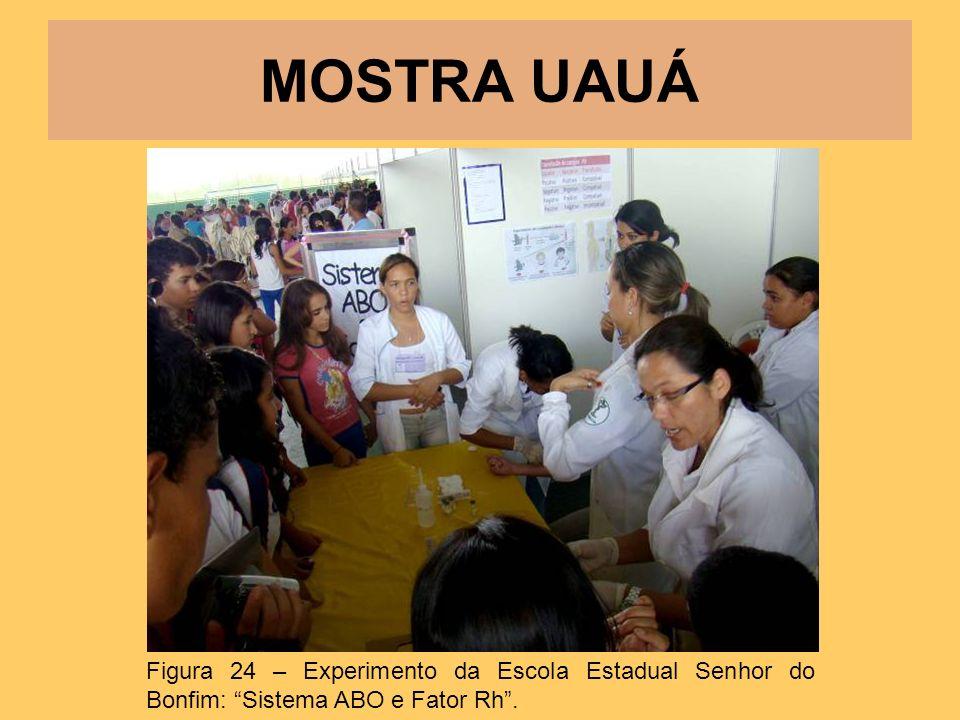 MOSTRA UAUÁ Figura 24 – Experimento da Escola Estadual Senhor do Bonfim: Sistema ABO e Fator Rh .