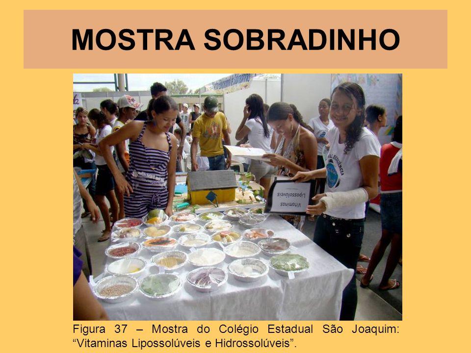 MOSTRA SOBRADINHO Figura 37 – Mostra do Colégio Estadual São Joaquim: Vitaminas Lipossolúveis e Hidrossolúveis .