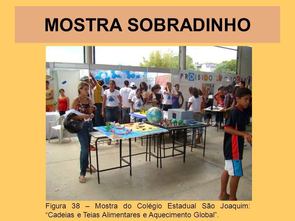 MOSTRA SOBRADINHO Figura 38 – Mostra do Colégio Estadual São Joaquim: Cadeias e Teias Alimentares e Aquecimento Global .
