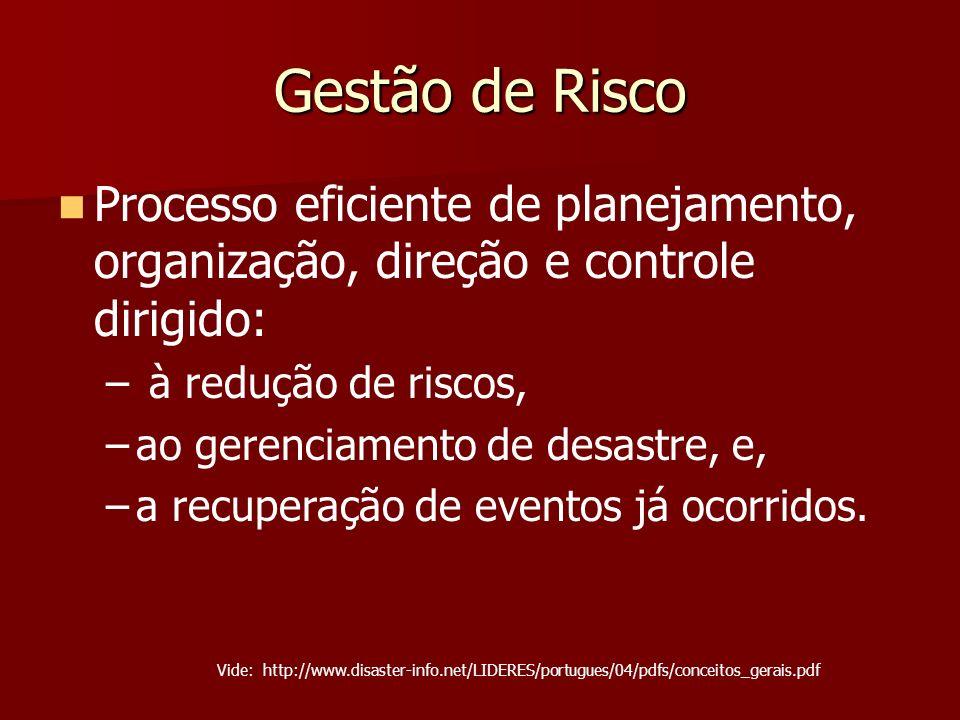 Gestão de Risco Processo eficiente de planejamento, organização, direção e controle dirigido: à redução de riscos,