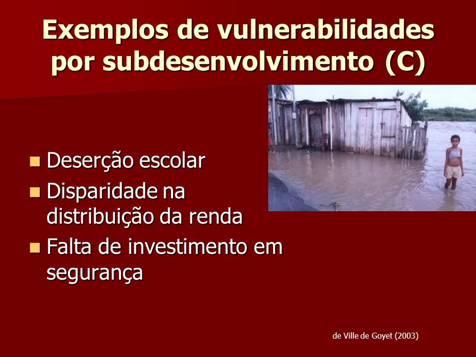 Exemplos de vulnerabilidades por subdesenvolvimento (C)