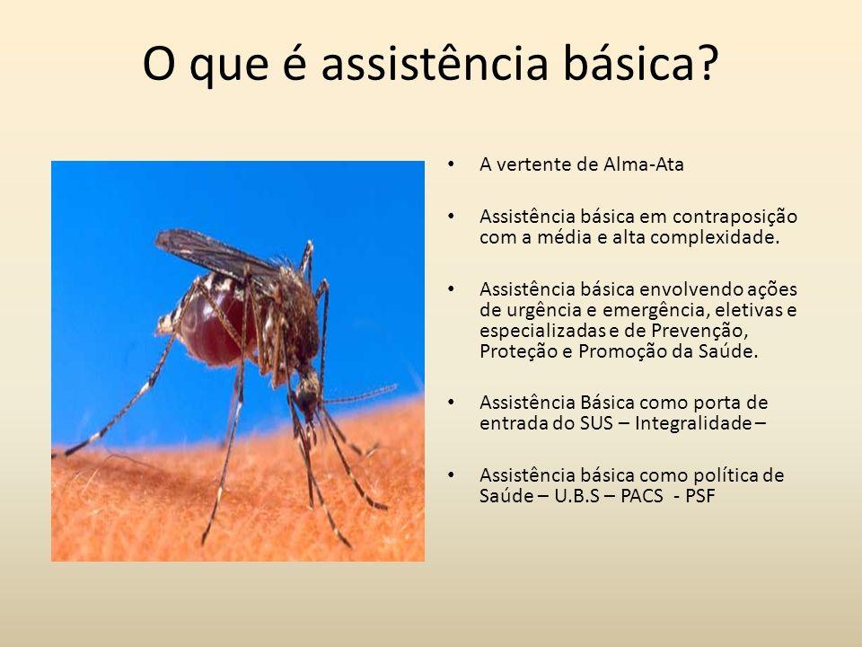 O que é assistência básica
