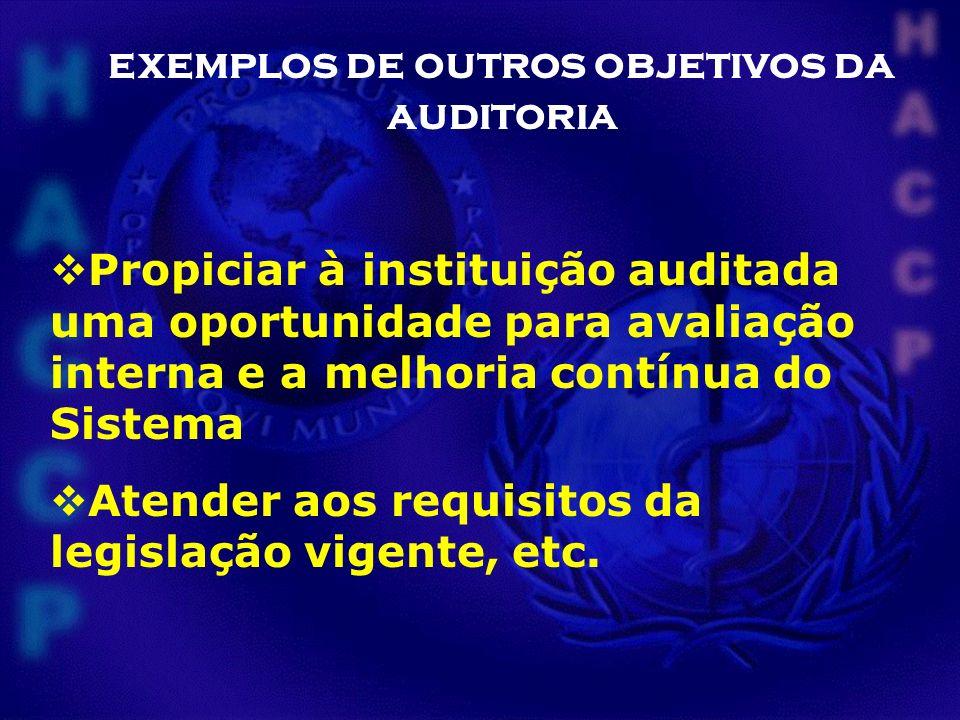 exemplos de outros objetivos da auditoria