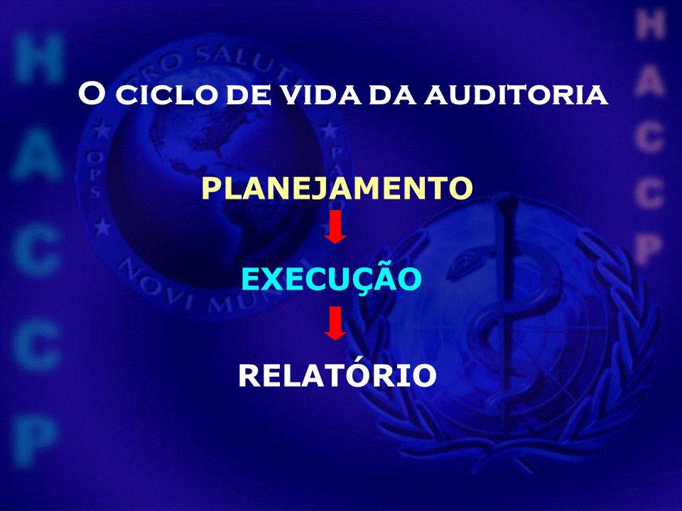 O ciclo de vida da auditoria
