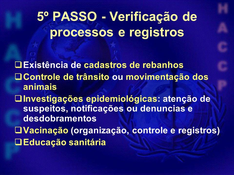 5º PASSO - Verificação de processos e registros