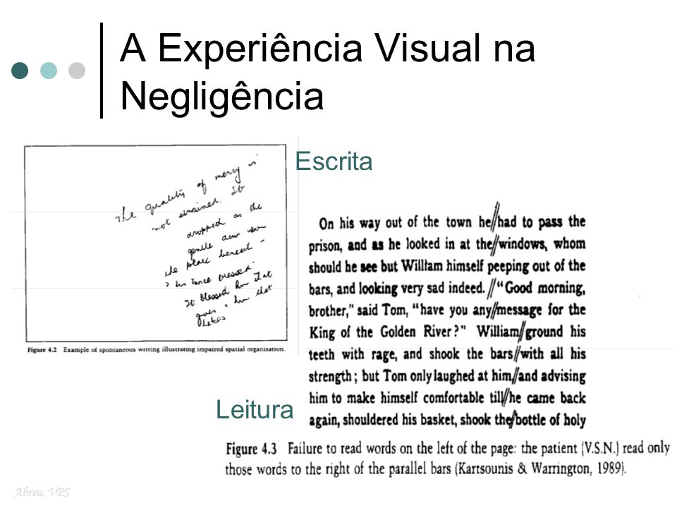 A Experiência Visual na Negligência