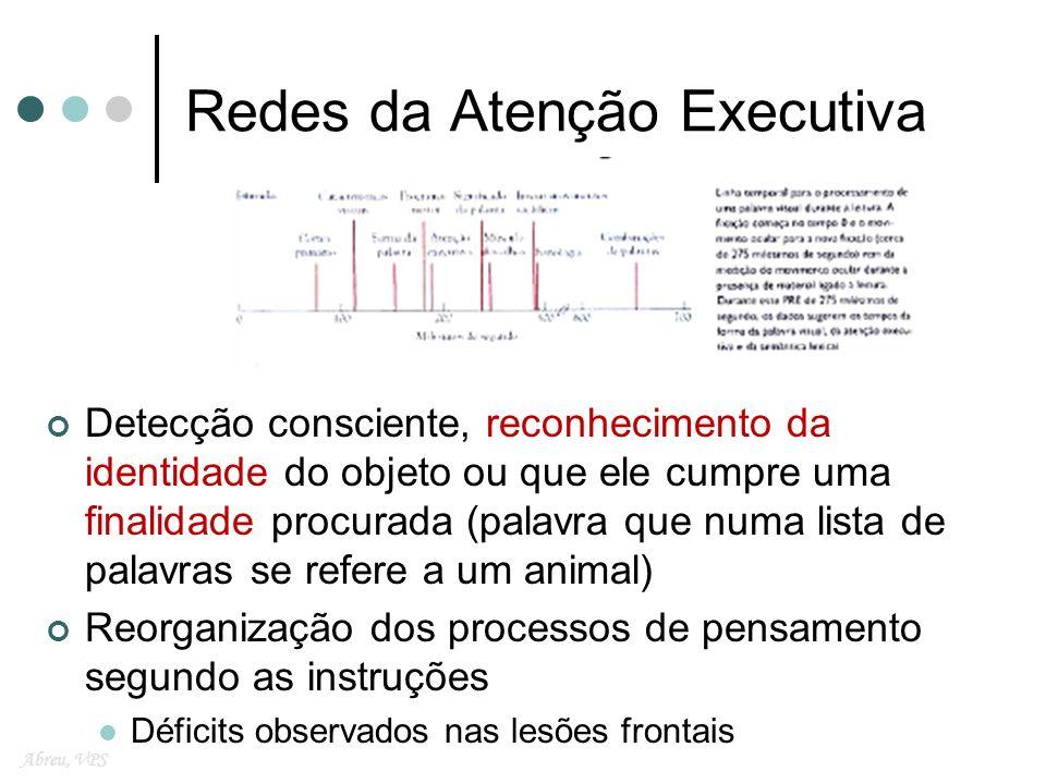 Redes da Atenção Executiva