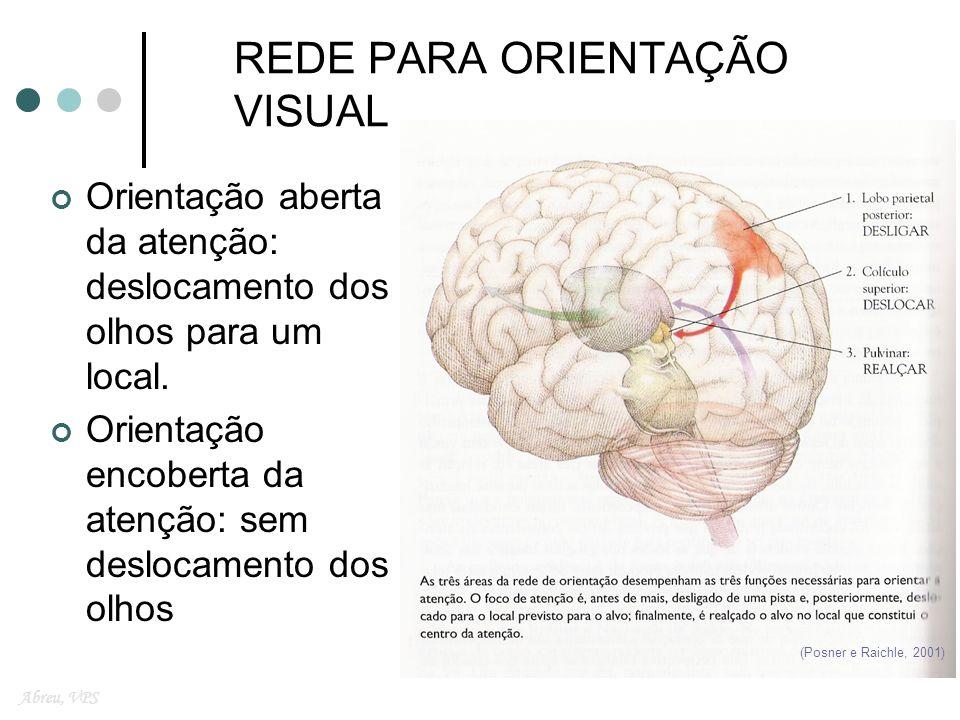 REDE PARA ORIENTAÇÃO VISUAL
