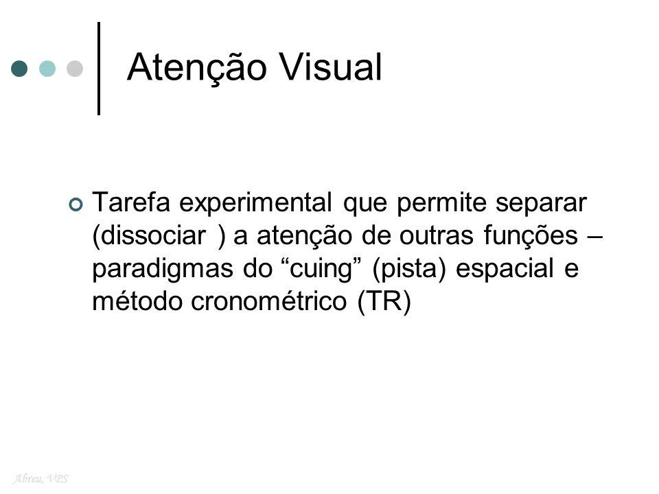 Atenção Visual