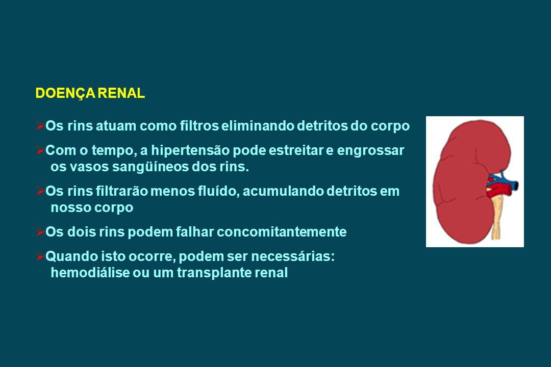 DOENÇA RENAL Os rins atuam como filtros eliminando detritos do corpo. Com o tempo, a hipertensão pode estreitar e engrossar.