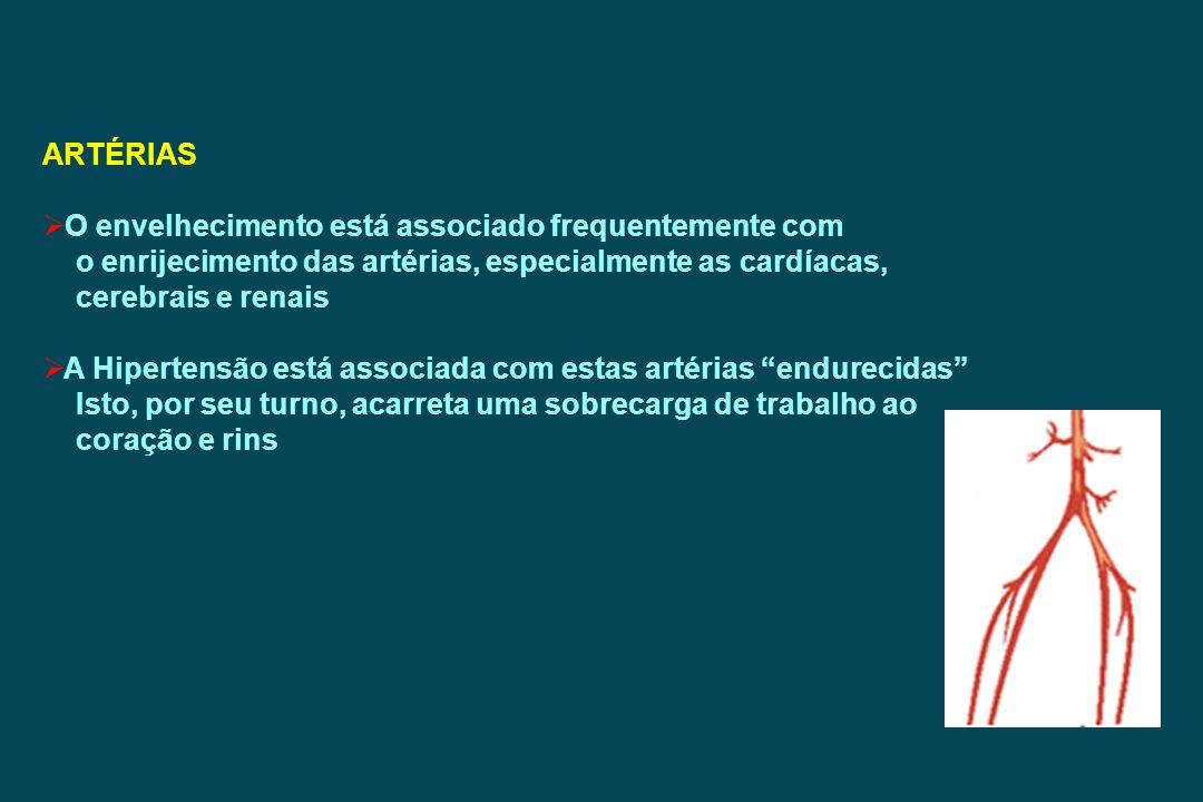 ARTÉRIAS O envelhecimento está associado frequentemente com. o enrijecimento das artérias, especialmente as cardíacas,