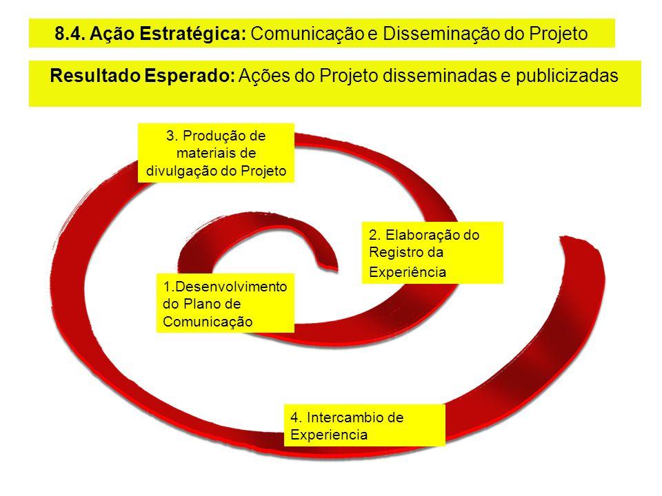 8.4. Ação Estratégica: Comunicação e Disseminação do Projeto