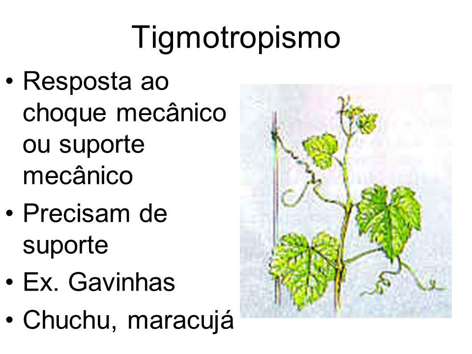 Tigmotropismo Resposta ao choque mecânico ou suporte mecânico