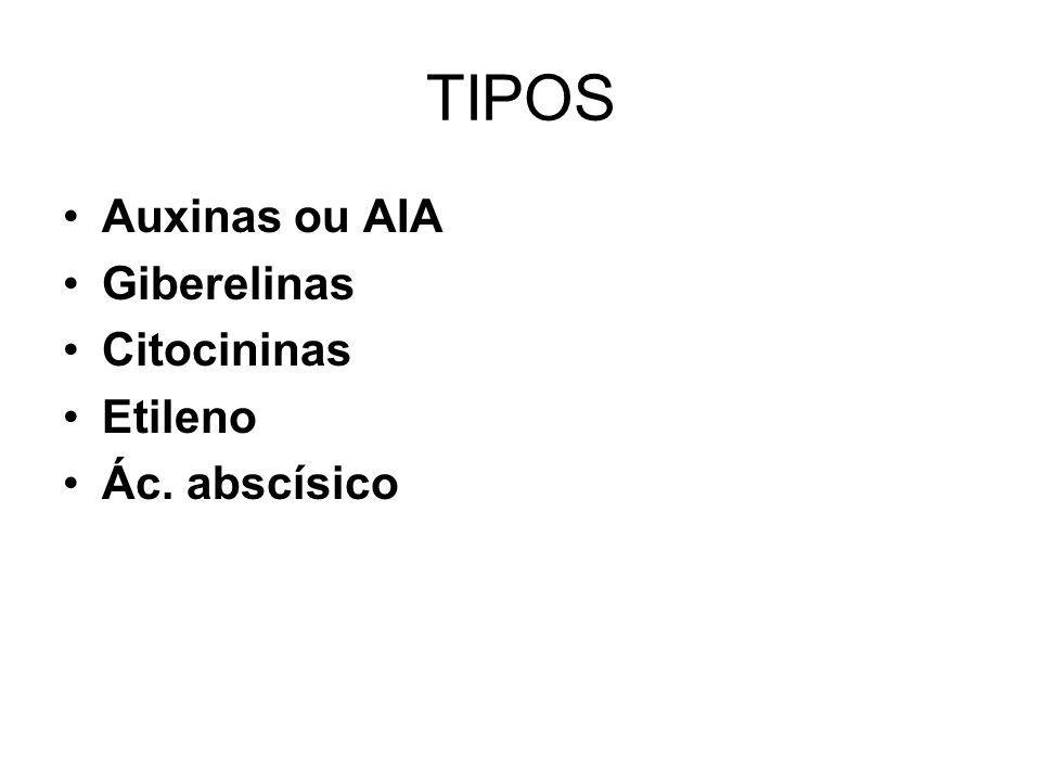 TIPOS Auxinas ou AIA Giberelinas Citocininas Etileno Ác. abscísico