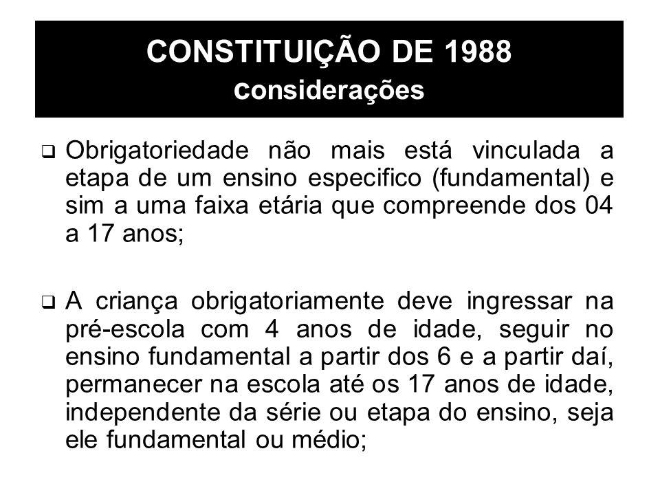 CONSTITUIÇÃO DE 1988 considerações