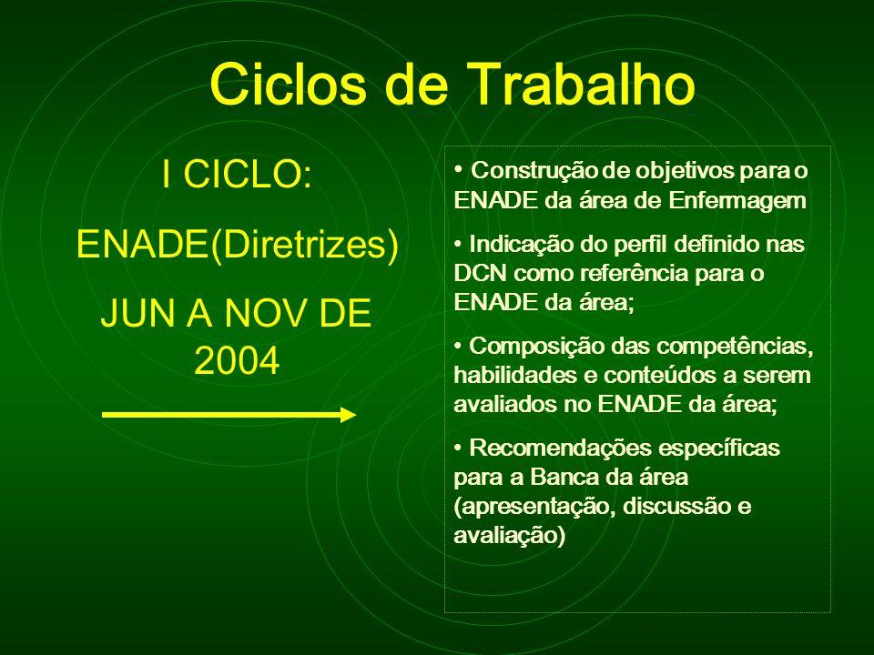 Ciclos de Trabalho I CICLO: ENADE(Diretrizes) JUN A NOV DE 2004