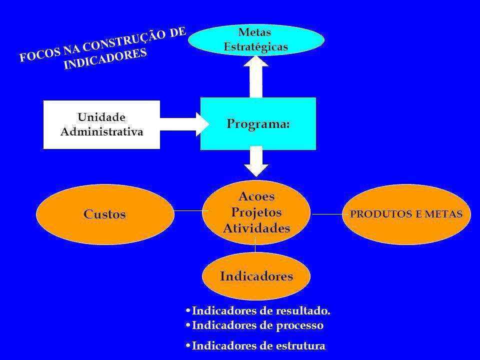 FOCOS NA CONSTRUÇÃO DE INDICADORES