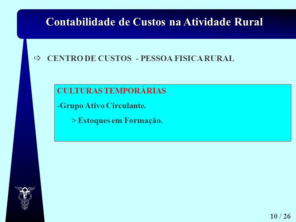  CENTRO DE CUSTOS - PESSOA FISICA RURAL. CULTURAS TEMPORÁRIAS. Grupo Ativo Circulante. > Estoques em Formação.