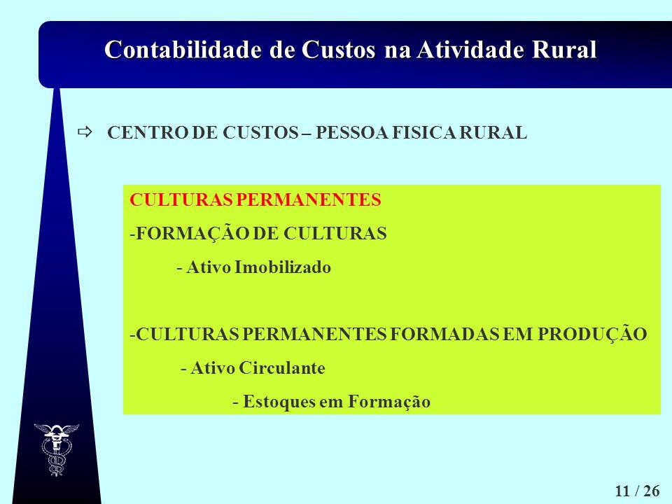 CENTRO DE CUSTOS – PESSOA FISICA RURAL. CULTURAS PERMANENTES. FORMAÇÃO DE CULTURAS. - Ativo Imobilizado.