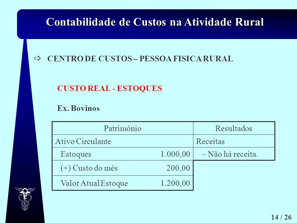  CENTRO DE CUSTOS – PESSOA FISICA RURAL. CUSTO REAL - ESTOQUES. Ex. Bovinos. 1.200,00. Valor Atual Estoque.