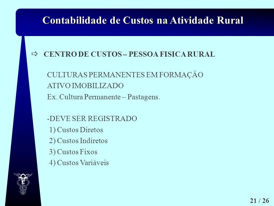 CENTRO DE CUSTOS – PESSOA FISICA RURAL. CULTURAS PERMANENTES EM FORMAÇÃO. ATIVO IMOBILIZADO. Ex. Cultura Permanente – Pastagens.