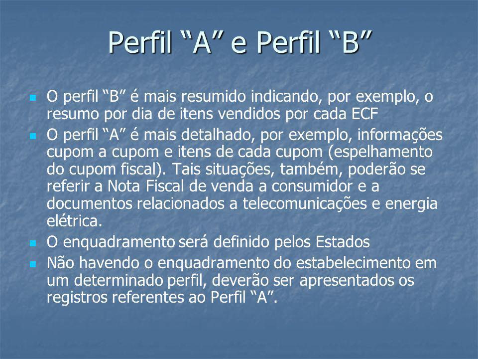 Perfil A e Perfil B O perfil B é mais resumido indicando, por exemplo, o resumo por dia de itens vendidos por cada ECF.