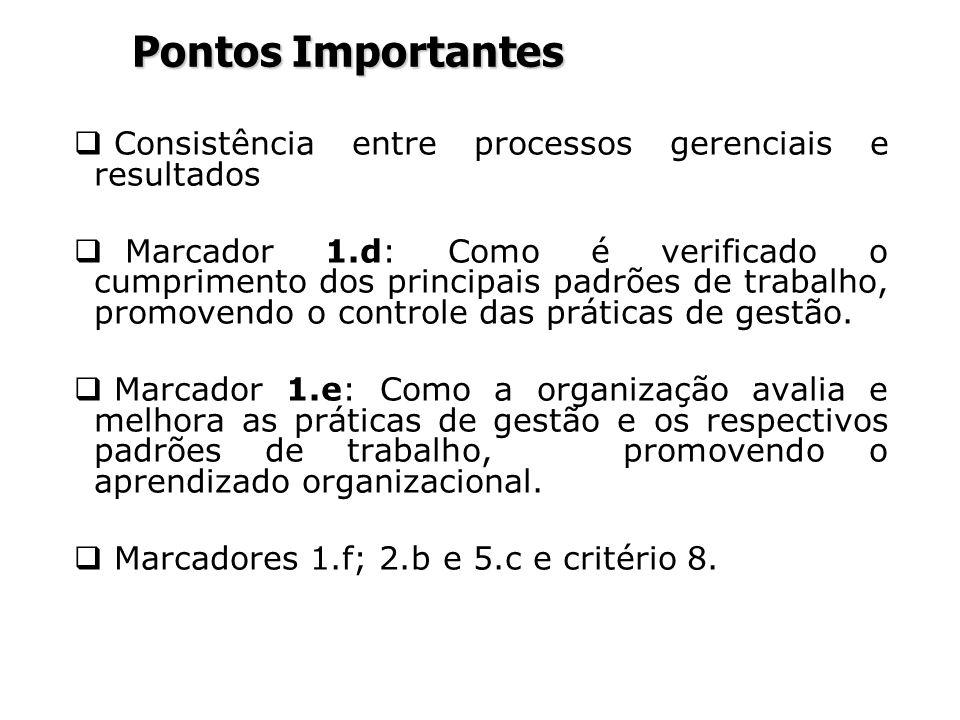 Pontos Importantes Consistência entre processos gerenciais e resultados.