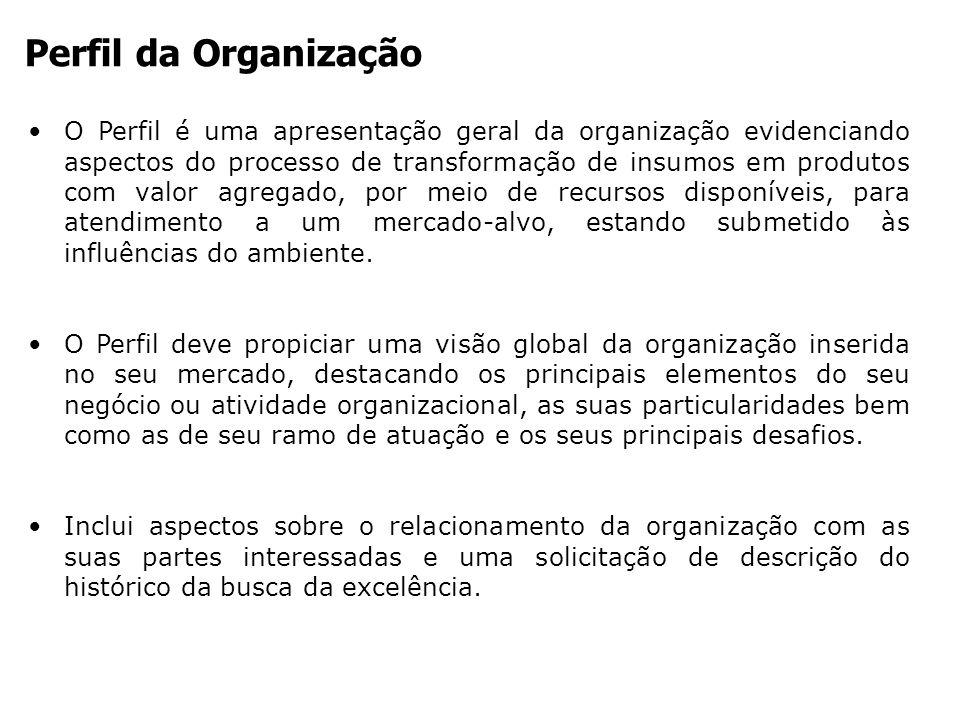 Perfil da Organização
