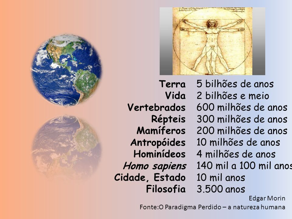 Terra Vida Vertebrados Répteis Mamíferos Antropóides Hominídeos Homo sapiens Cidade, Estado Filosofia